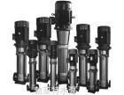 福建省厦门市 热水循环泵 QDL单吸离心泵 找经销商