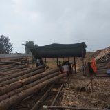 生产销售优质防腐油木杆-电线杆-油炸杆-通信电杆