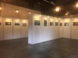 上海個人畫展展廳布置,掛畫展板制作,屏風展架搭建