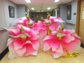 银川市鼓之舞韵舞蹈团