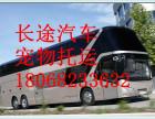 汽车)义乌到茂名大巴汽车(发车时刻表)几小时+票价多少?