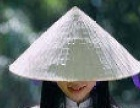 越南商务服务签证申请