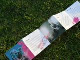 兰州平面设计及印刷、广告印刷、彩页印刷、报刊印制