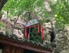 玄易斋(淄博)风水――林木预测