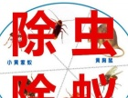 常州专业灭鼠 灭蟑螂 灭蚊虫 灭四害
