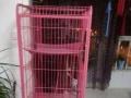 猫笼狗房子送猫食猫砂猫玩具