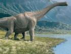回归恐龙时代 体验远古生活
