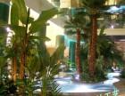 枫林园艺厂家专业制作仿真植物人造假绿植室内外装饰造景树