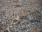 铜多少钱一斤 废铁少钱一吨 废金属 处理设备