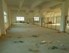 葵涌比亚迪附近8000平米独院厂房出租(可分租)