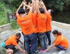 企业团队建设 拓展训练 企业郊游