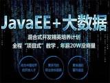上海web前端工程師培訓,javaEE培訓