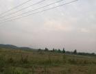 黄陂农庄种植养殖养老婚庆婚介房产等项目合作