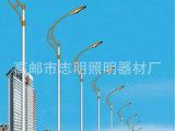 长期供应 单臂路灯 厂区路灯 7米路灯 道路照明灯
