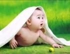 邓州萍姐家政优质的月嫂育婴师护工保姆