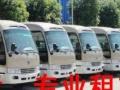 天津专业租车20年 公司班车 旅游租车 来电优惠