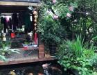 上海較大的錦鯉魚市場