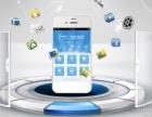 APP小程序各种系统专业定制开发