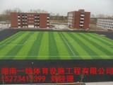 湘西泸溪县人造草皮铺设单位报价湖南一线体育设施