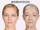 湘潭微整形培训机构米娜国际医学美容机构