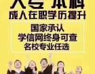 成人高考 学历教育 潍坊佳晟教育