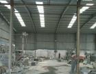 白马石材城老327路段 厂房 750平米大棚加院