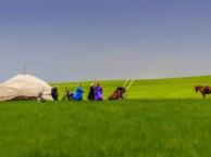 呼伦贝尔自助游包车徒步 穿越大草原 感受夏营地民族风光
