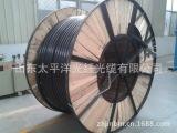供应【太平洋】铜芯阻燃 聚氯乙烯绝缘 PE护套软电缆 RVV