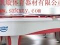 供应深圳南头中高档英美式桌球台(两用台)深圳桌球台