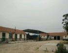平度郭庄镇朱家庄村农产品 厂房 3300平米