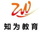 重庆鱼洞小学初中高中文化课补习辅导机构-知为教育