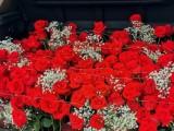 南京鲜花,气球场地布置,婚庆礼仪服务,生日,告白,求婚