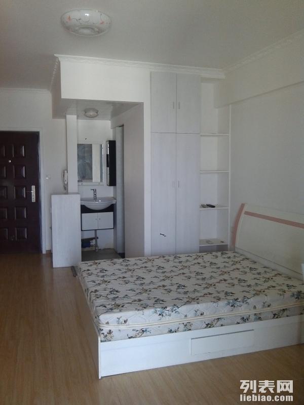 紫晶城园筑 1室 1厅 41平米 整租