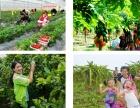 东莞农家乐-绿野生态园-水果采摘-真人CS-拓展培训
