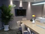 300元每月精装办公室,单人双人独立工位,可虚拟注册
