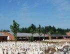 出租147团部养殖场价格便宜条件优越
