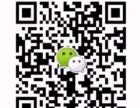 又木黑糖红枣姜茶 市场大需求广 2016必火!
