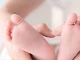 1-3岁家庭托管 日托,半月托