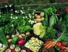蔬菜粮油调料副食配送