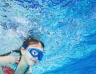 sanya暑假游泳培训班