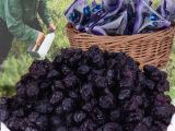 聚野蓝莓干野生蓝莓干果干原味无糖无添加特产500g包邮