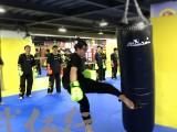 上海婴幼儿武术 散打 防身术培训