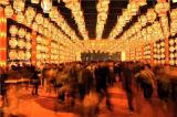 具有口碑的灯光节定制当选慧光彩灯 灯光节出租厂家
