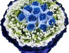 愈爱愈好-精品蓝色妖姬情人节专属鲜花预订