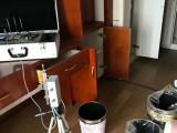 上海柠耕甲醛检测治理空气净化