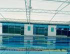 学游泳 799包教会