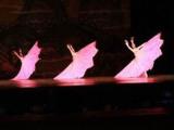 贵阳云岩区小孩舞蹈学习有哪些