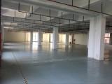 4000平專業電商倉庫出租,電商倉儲代運營