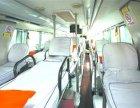 (九江到平顶山的客车)乘车时刻表+几点发车?在哪儿坐?多少钱