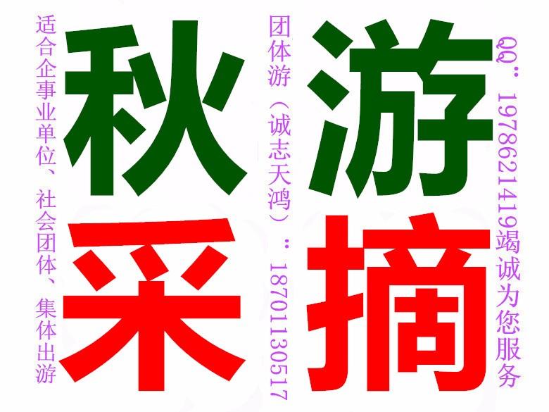 北京周边游去平谷金海湖+湖洞水团体一日游
